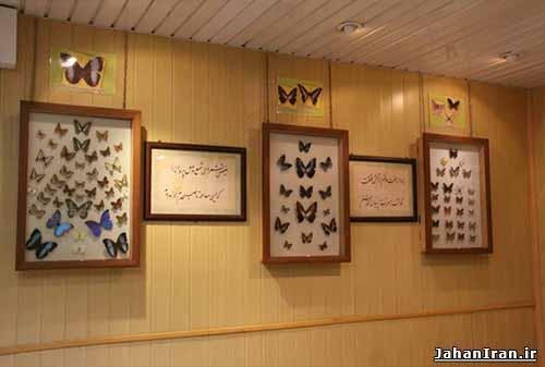 باغ موزه پروانه ها اصفهان