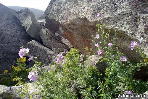 کوه و چشمه آب معدنی اوکوز داغی